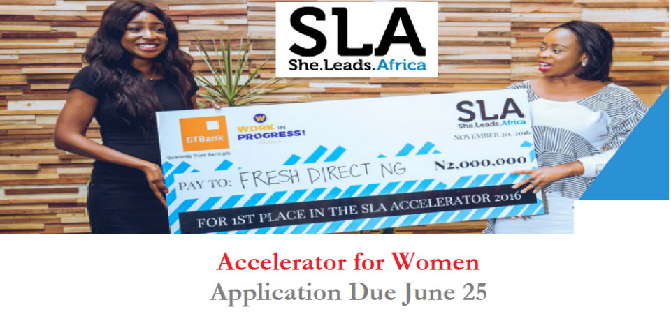 Women, Apply ToShe Leads Africa Accelerator Nigeria And Win Cash For Your Business