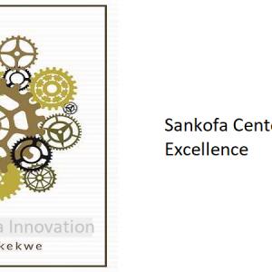 11.0 – Sankofa Center of Excellence